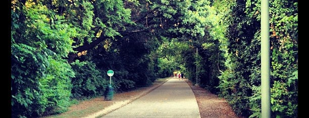Katy Trail is one of 67 Things to do in Dallas Before You Die or Move.