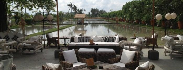 Sardine is one of Bali.