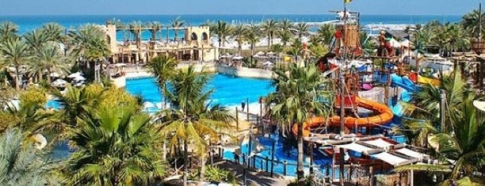 Wild Wadi Water Park is one of Dubai, UAE.