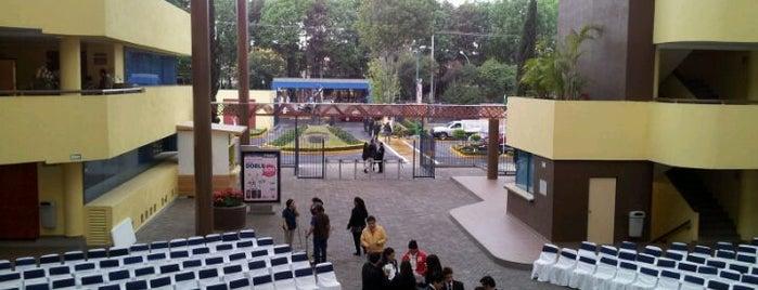 Universidad Del Pedregal is one of Universidades Ciudad de México.