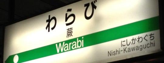 Warabi Station is one of JR 미나미간토지방역 (JR 南関東地方の駅).