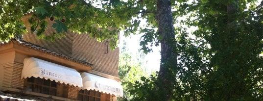 Terraza Rincon De Goya is one of Daniel : понравившиеся места.