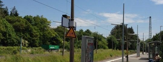 S Kronberg (Taunus) is one of SMS FRANKFURT Group Travel : понравившиеся места.