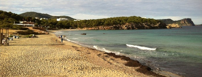 Cala Nova is one of Orte, die Can gefallen.