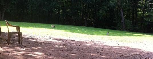 Gladwyne Dog Park is one of ✨ Larry: сохраненные места.