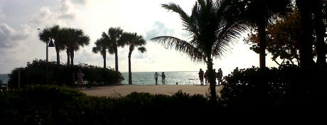 Paradise Grille and Bar is one of St Pete Beaches Feed Your Face Guide.