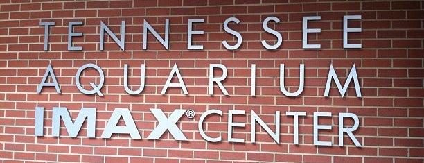 IMAX is one of สถานที่ที่ Mari ถูกใจ.