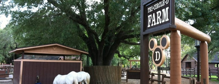 Tri-Circle-D Ranch & Farm is one of ACTIVITIES.