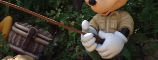 Camp Minnie-Mickey is one of Walt Disney World.