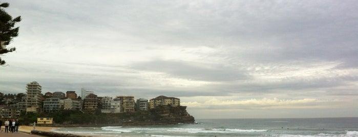 Queenscliff Beach is one of Sydney.