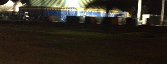 Cirque du Soleil - Varekai 2012 is one of Orte, die Jeferson gefallen.