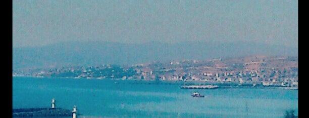 Tekirdağ Marina is one of Tekirdağ.