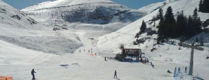 Prato Nevoso is one of Dove sciare.