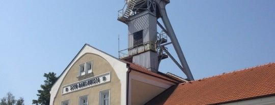 Соляная шахта «Величка» is one of Kraków.