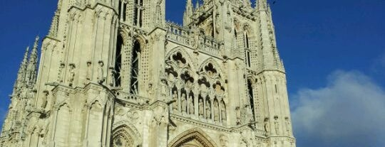 Catedral de Burgos is one of The best in Europe.