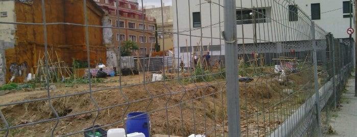 Hort Urbà del Forat is one of barri besos mar poble nou.