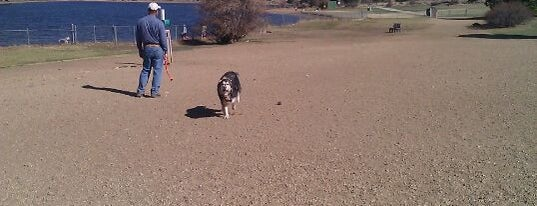 Estes Park Dog Park is one of Posti che sono piaciuti a Dominic.
