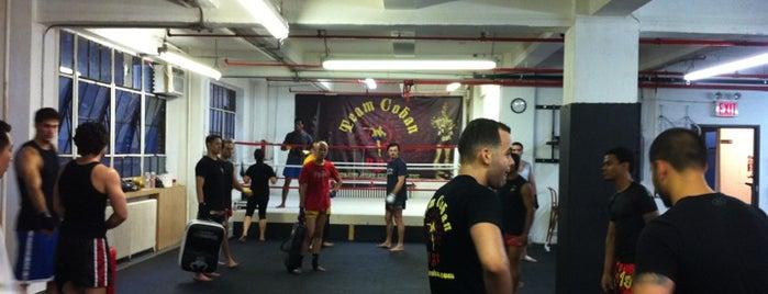 Coban's Muay Thai Camp is one of Locais curtidos por Ishan.