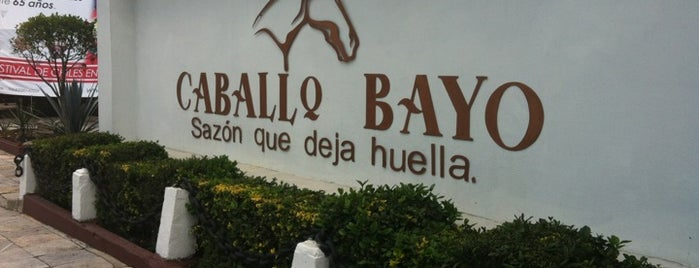 Caballo Bayo is one of Restaurantes.