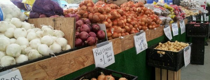 Coastal Carolina Flea Market is one of MUNDO À FORA.
