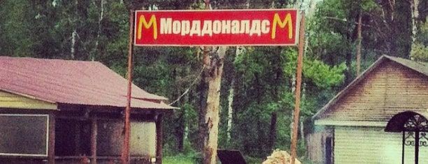 Морддоналдс is one of 5 Просто удивительно!!! Вы знаете, что....