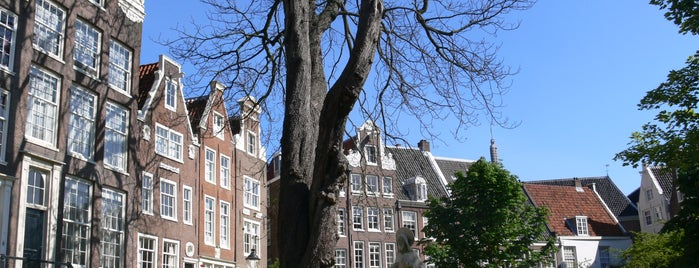 Begijnhof is one of Amsterdam: student edition.