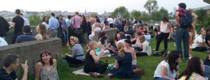 Southbank Centre Roof Garden is one of London's best pubs & bars.