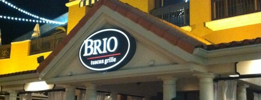 Brio Tuscan Grille is one of Best of St. Pete's.