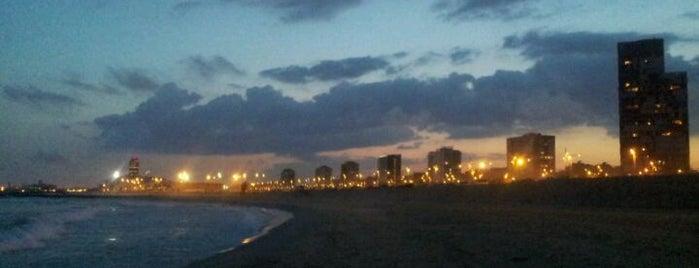 Praia do Levante is one of Playas de Barcelona.