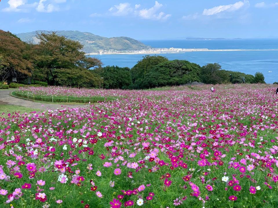 能古島自然公園