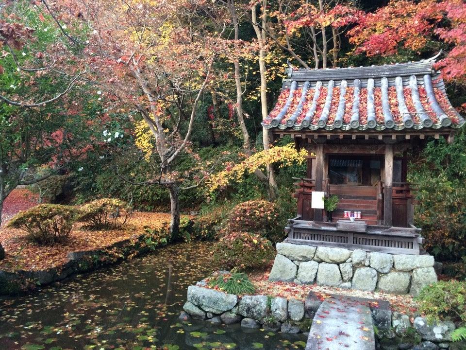 觀心寺(河內長野市)