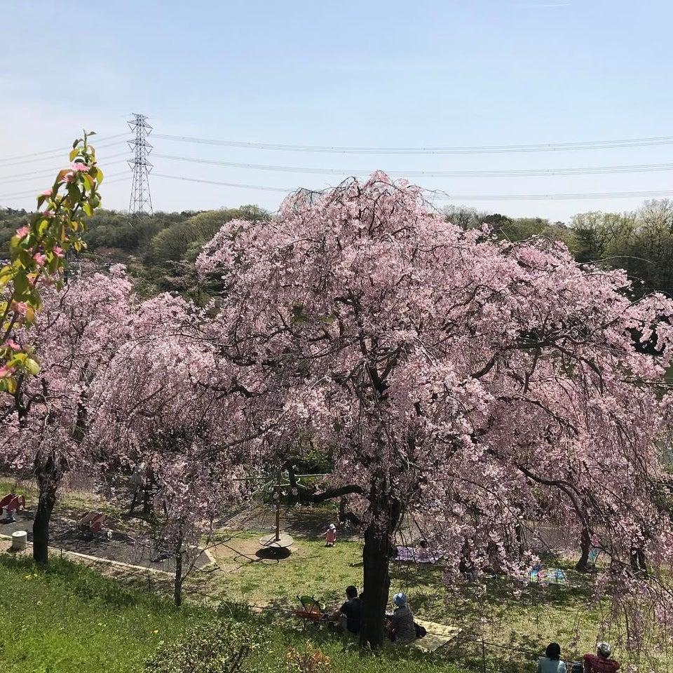 東谷山水果公園