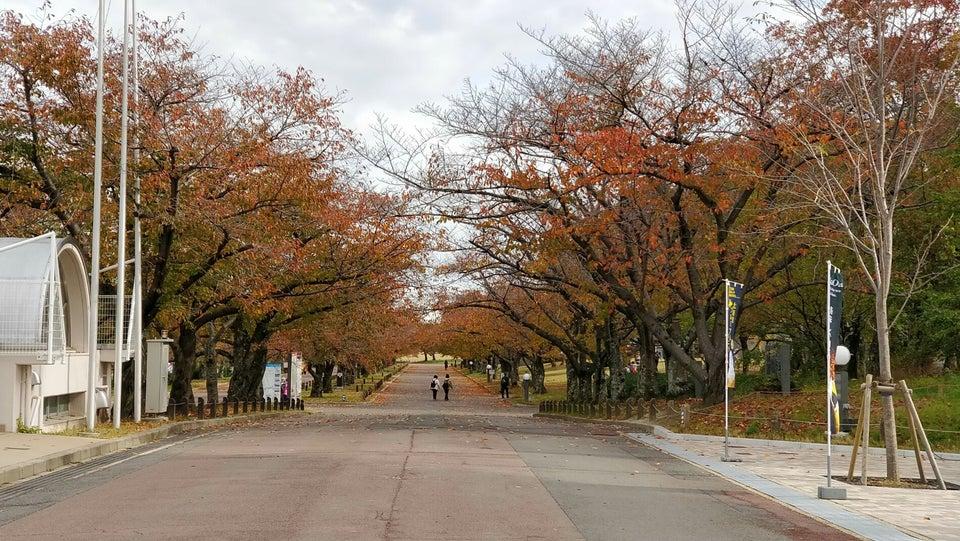 萬博紀念公園(吹田市)