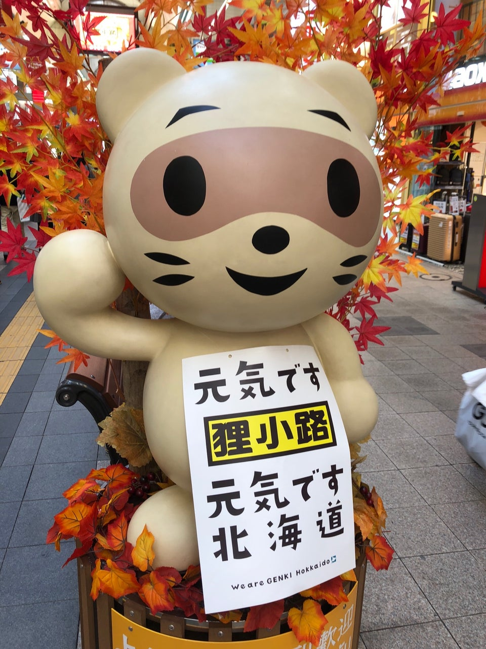 去札幌逛到飽