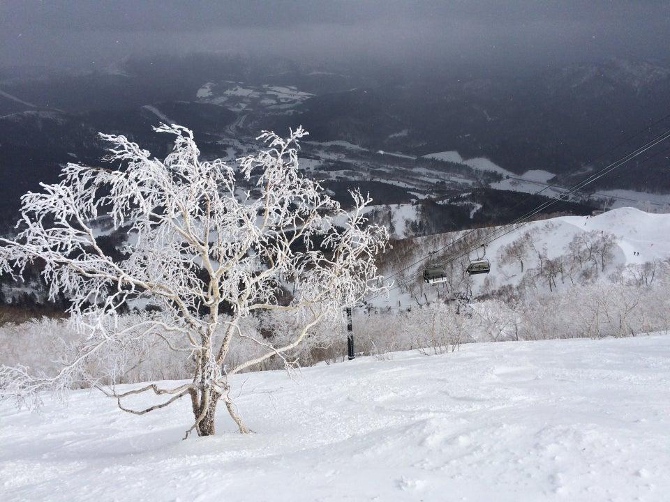 星野TOMAMU度假村滑雪場