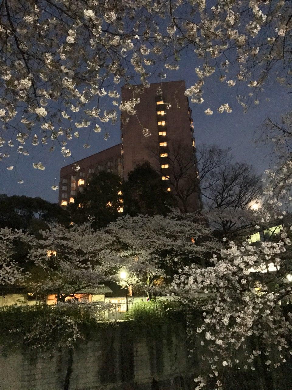 東京樁山莊大酒店