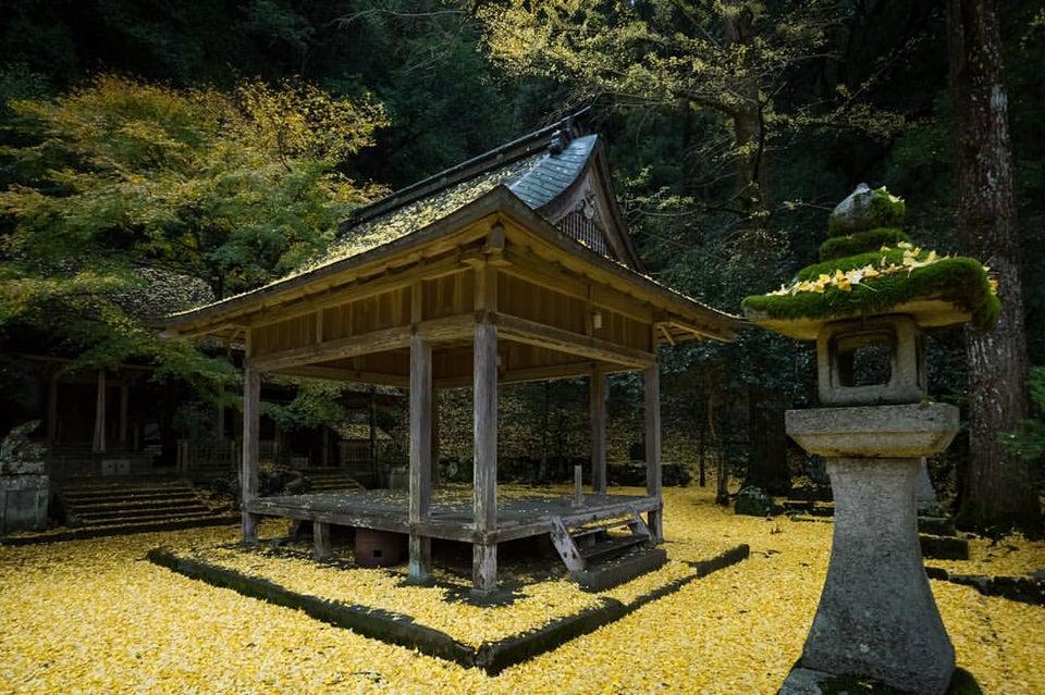 岩戶落葉神社2