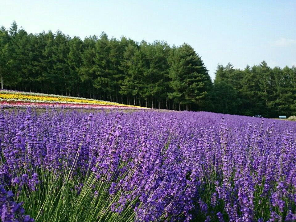 北海道|彩香の里