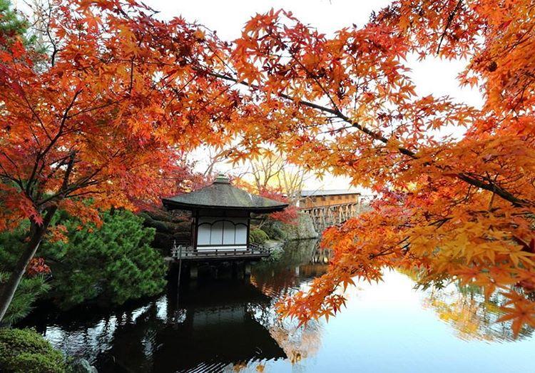 西之丸庭園 (和歌山城)