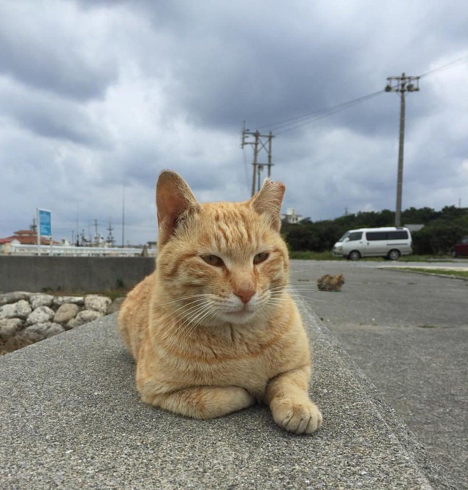 奧武島觀音堂