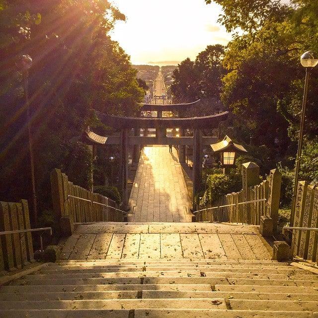 宮地嶽神社 光之路