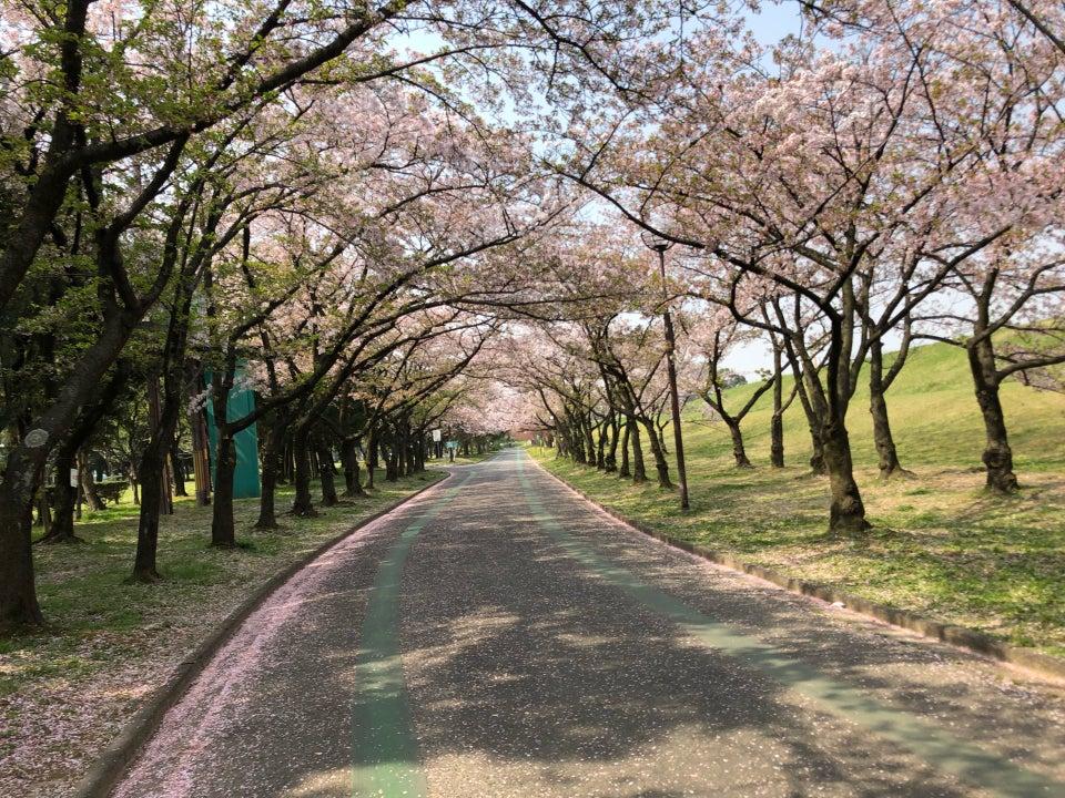 庄內綠地公園