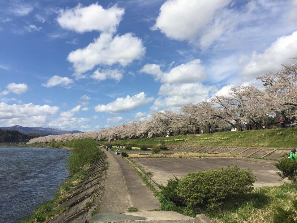 秋田 檜木內川堤