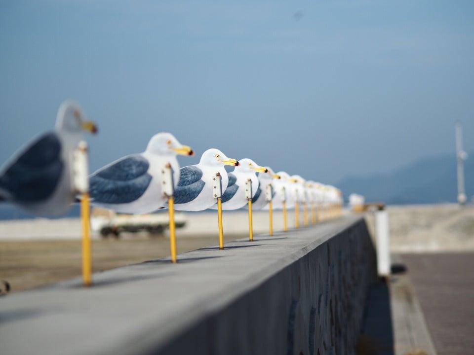 藝術作品:海鷗的停車場(カモメの駐車場)