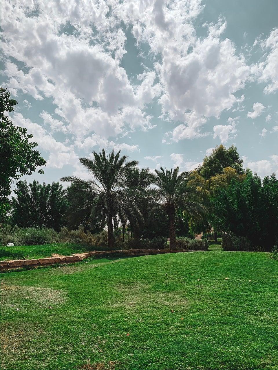 حديقة العهد بالرياض 462163259_andjmlcoFn