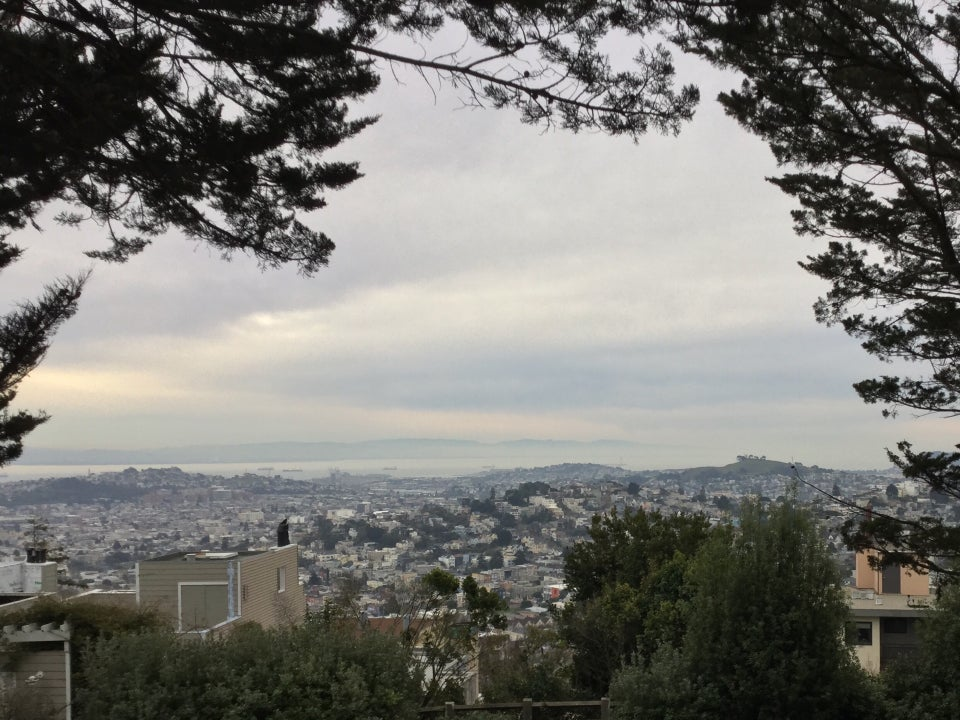 Trees on either side of a view of the East Bay, overcast sky, looking down from Mount Olympus.