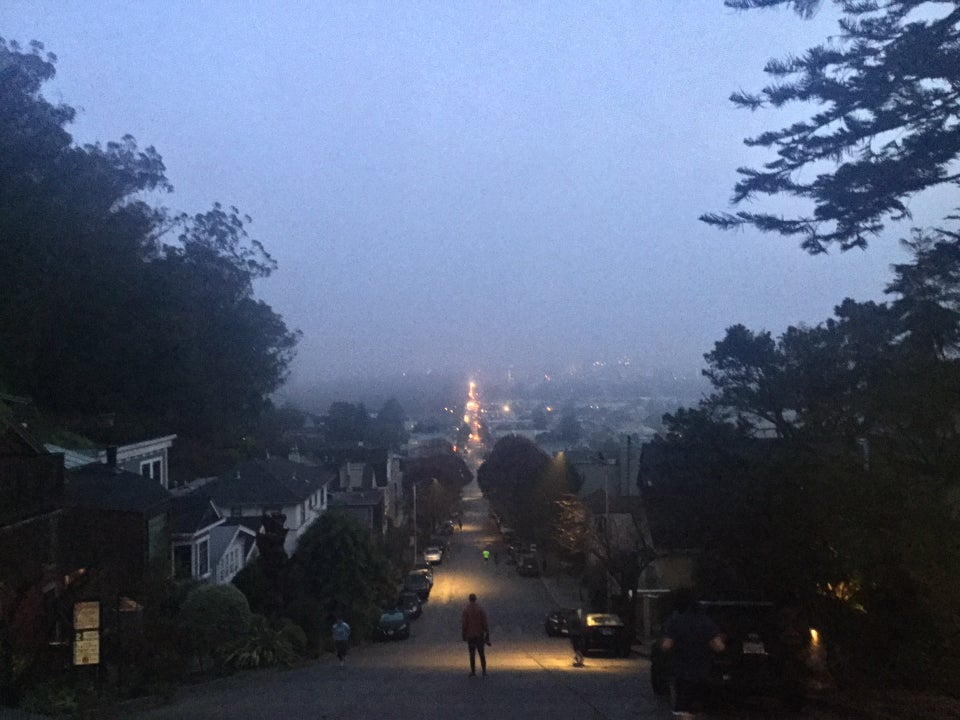 Looking north on Stanyan Street with thick fog hanging over the city, trees and houses on both sides.