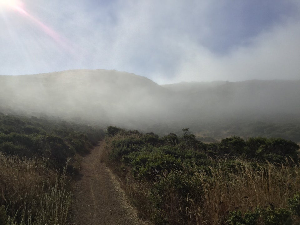 Single track uphill trail between bushes disappearing into fog, partially obscured hills in the distance