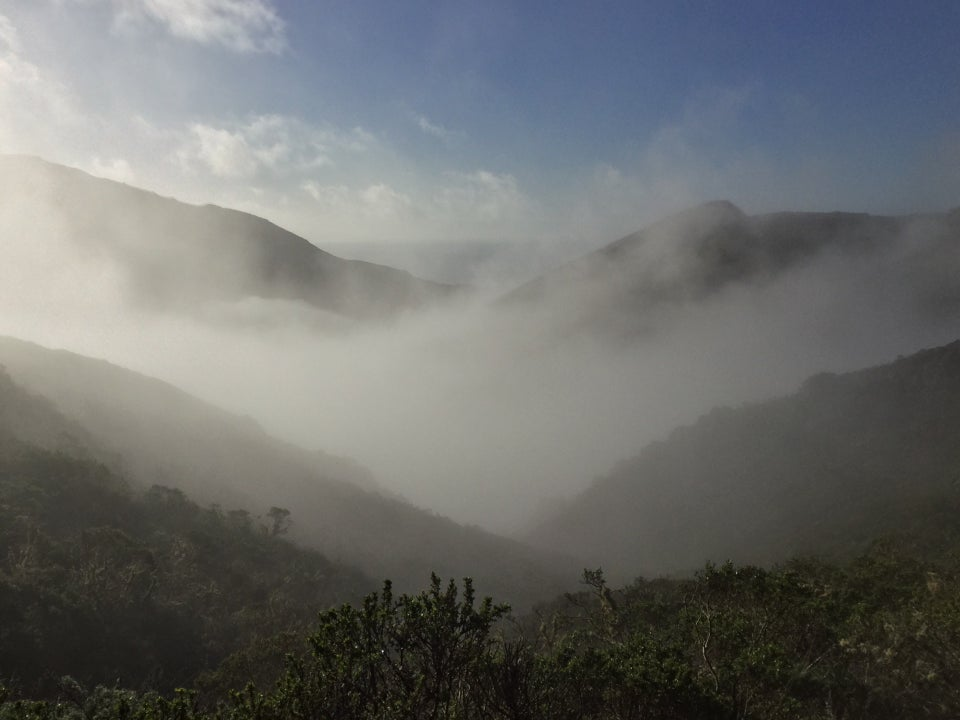 Pacific Ocean in the distance barely visible between two hills and a valley in between, themselves partly occluded by low hanging fog, itself mostly behind nearby hills, part of a near hill visible on the left with green plants.