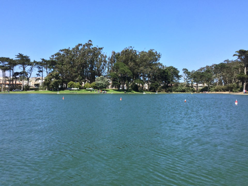 Spreckels lake glinting blue green, with trees on the far shore and a clear blue sky above.